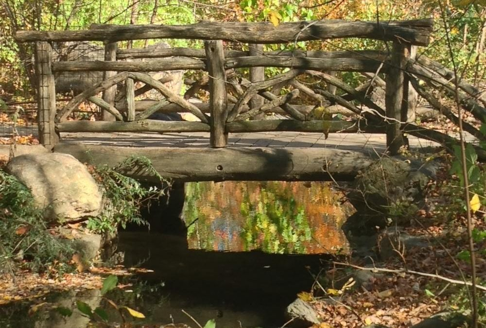 Central Park's North Woods and Northern Forts: rustic and historic refuges away from the crowds